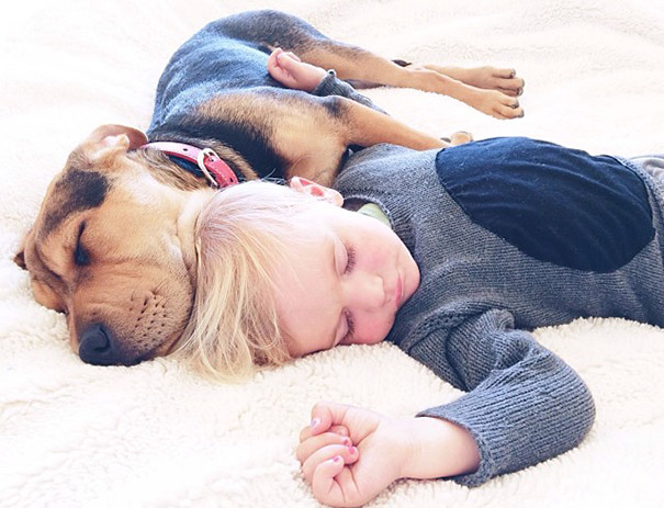 Napping With His Puppy