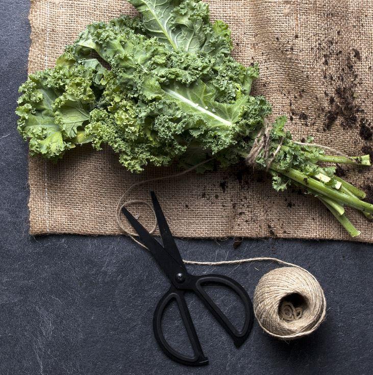 Varza Kale, Ingredientul Secret de la Electrolux