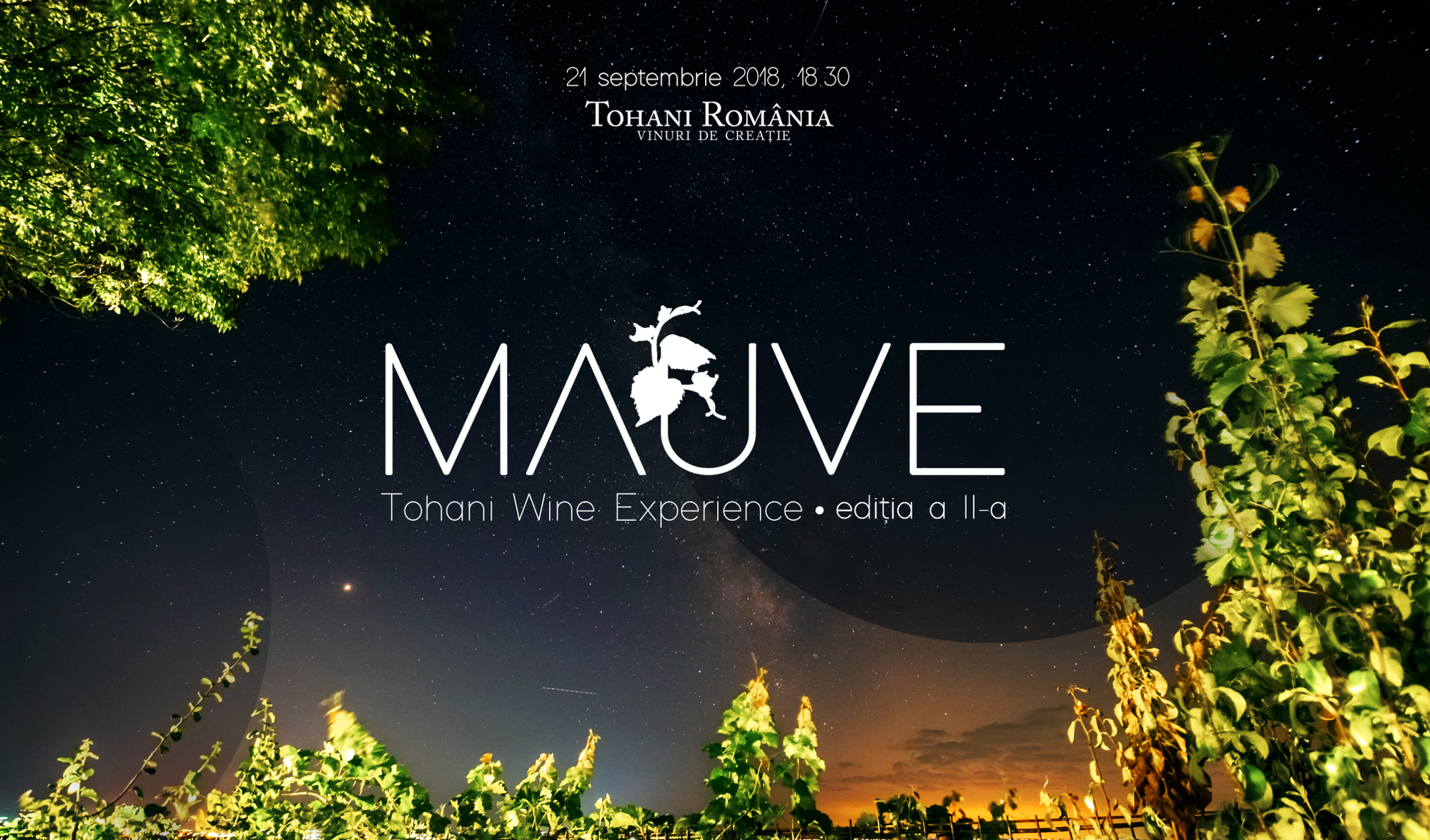 Tohani Wine Experience 2019. Jazz Edition