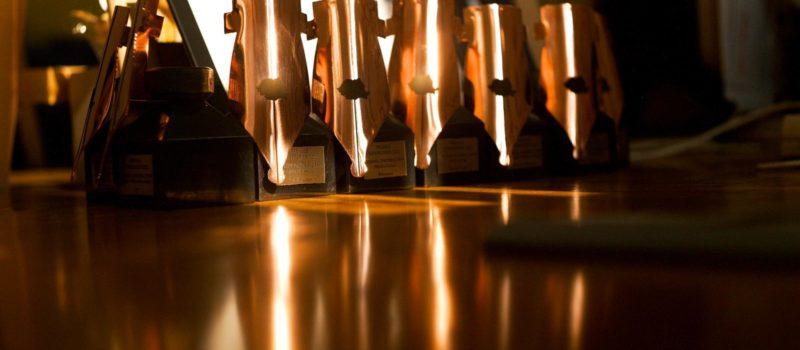 Câștigătorii Premiilor Superscrieri #9